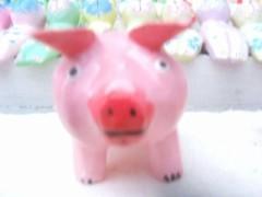 ピンクのブータンm(*^ ^*)m