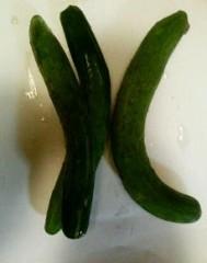 野菜を挿れて…の、