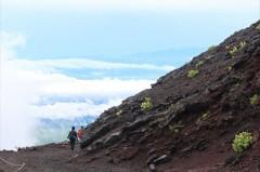 【お題日記】富士山に登ったことはありますか?