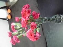 今日のお花(^-^)