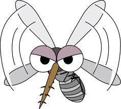最近、蚊にさされなくなった!