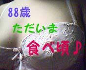 エッチできないタイプ( ゚,_ゝ゚)88歳の乳付き