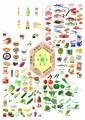 細胞生物学的に正しいダイエット