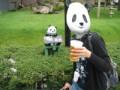 大熊猫・・より大虎?
